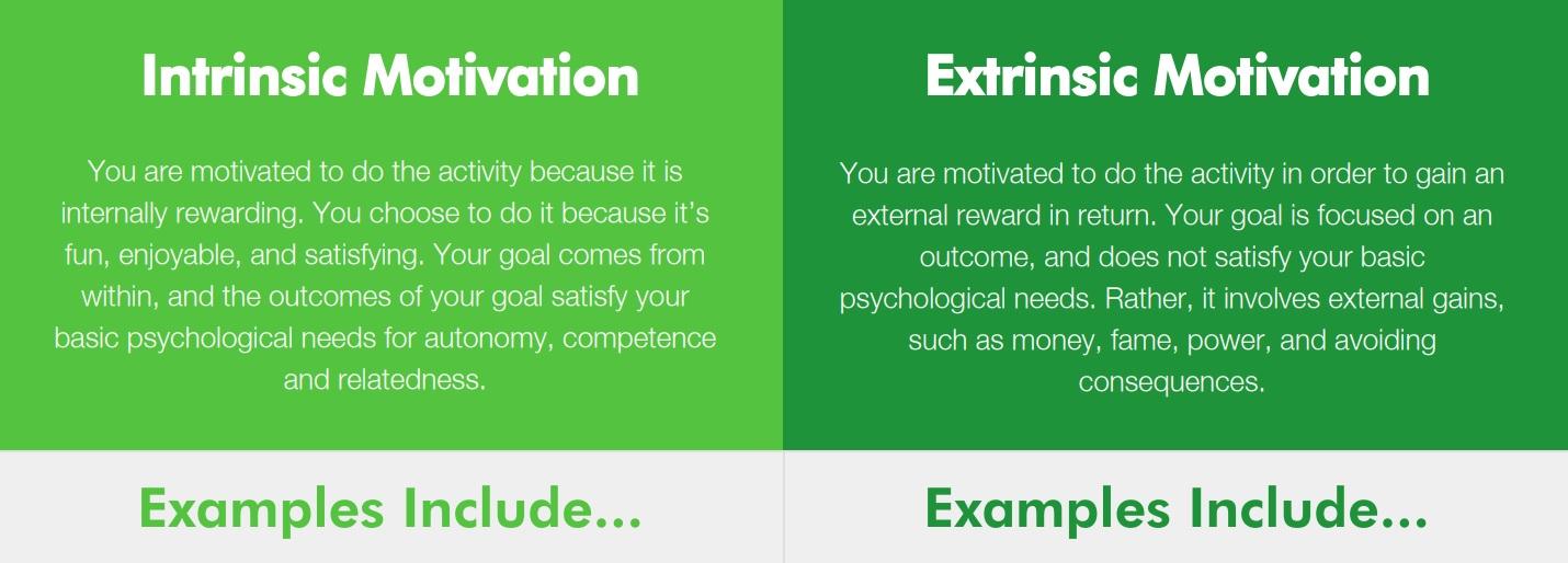 Intrinsic vs. Extrinsic Motivation Examples